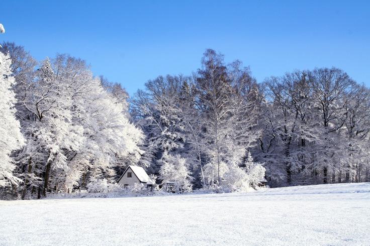 winter-22506_1920